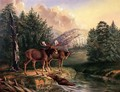 Moose in Maine - Titian Ramsay Peale