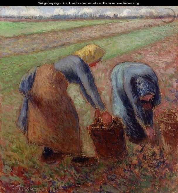 Potato Harvest - Camille Pissarro