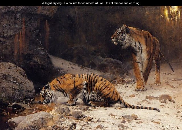 Tigers at a Drinking Pool - Wilhelm Kuhnert