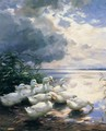 Ducks in the Morning - Alexander Max Koester