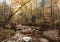 Brook in Autumn, Keene Valley, Adirondacks - John Lee Fitch