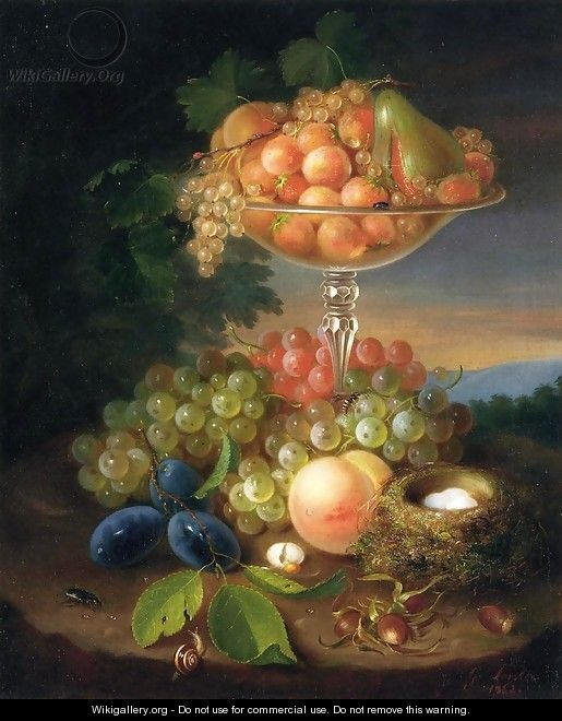 Still Life with Fruit, Nest of Eggs and Insects - George Forster