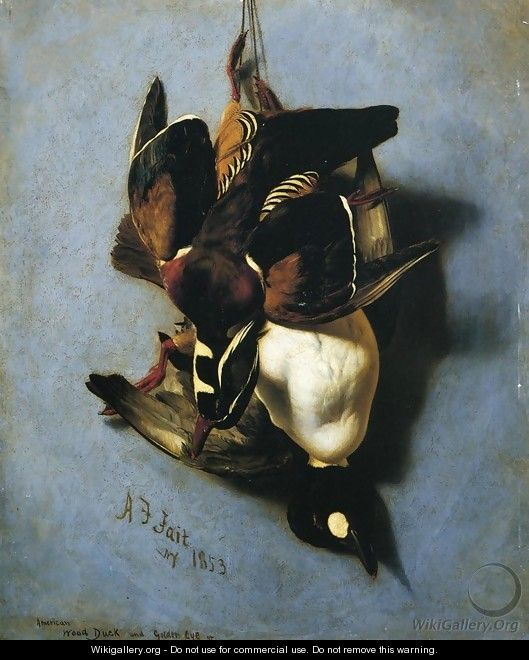 American Wood Duck and Golden Eye - Arthur Fitzwilliam Tait