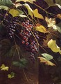 Wild Grapes - Andrew John Henry Way