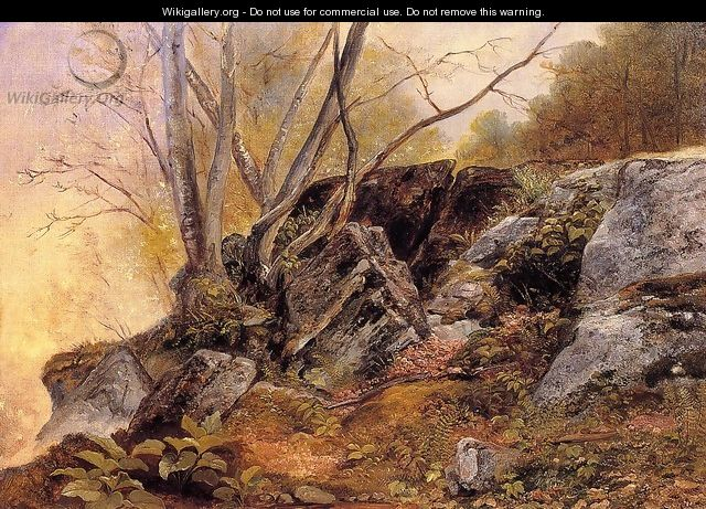 Study from Nature, Rocks and Trees - Asher Brown Durand