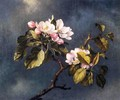 Apple Blossoms 2 - Martin Johnson Heade