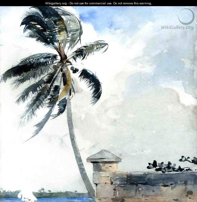 A Tropical Breeze, Nassau - Winslow Homer