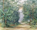 The Blue Mountains Jamaica - Admiral Sir Edward Augustus Inglefield