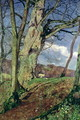 In Early Spring A Study in March - John William Inchbold