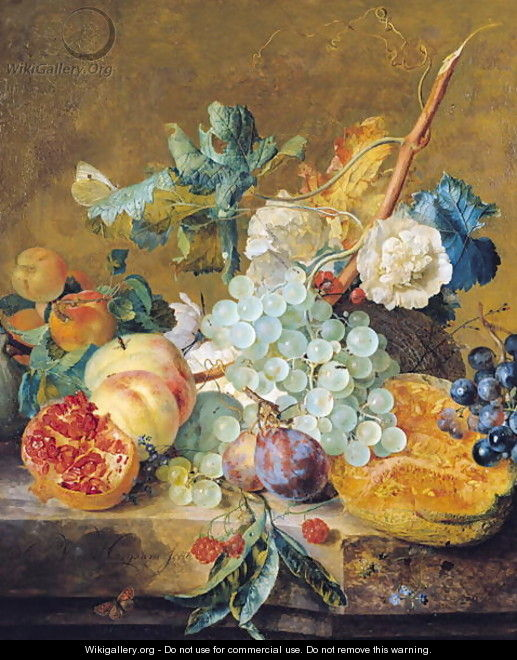 Flowers and Fruit - Jan Van Huysum