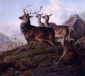 Red Deer in a Highland Landscape - Charles Jones