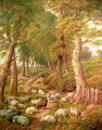 Landscape with Sheep - Charles Jones
