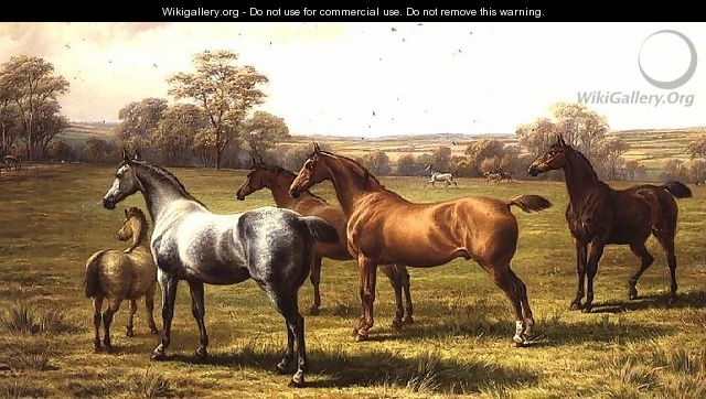 Horses and Foal in a Field - Charles Jones