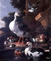 Waterfowl in a classical landscape - Melchior de Hondecoeter