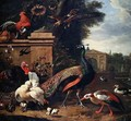 A Peacock a Hawk and Various Fowl and Ducks in a Park - Melchior de Hondecoeter
