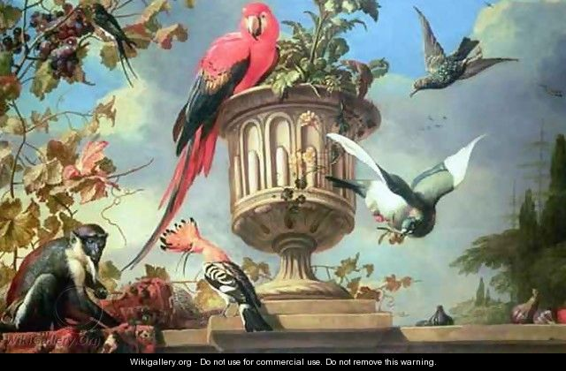 Scarlet Macaw perched on an urn with other birds and a monkey eating grapes - (attr. to) Hondecoeter, Melchior de