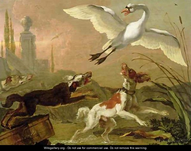 Swan being chased by three dogs - Abraham Danielsz Hondius