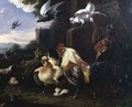 A cockerel and other fowl in a landscape - Melchior de Hondecoeter