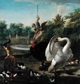 A Park with Swan and Other Birds - Melchior de Hondecoeter