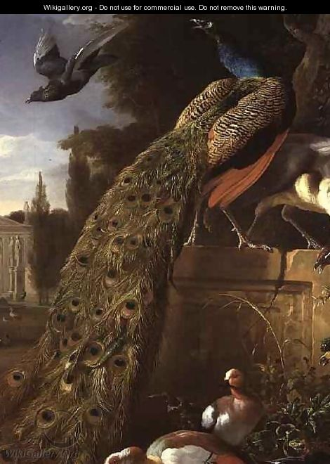 Peacock and a Peahen on a Plinth with Ducks and Other Birds in a Park - Melchior de Hondecoeter