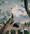 Palace of Amsterdam with Exotic Birds - Melchior de Hondecoeter