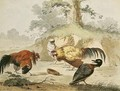 Cocks Fighting - Melchior de Hondecoeter