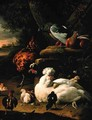 A hen with chicks a rooster and pigeons in a landscape - Melchior de Hondecoeter