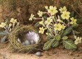 Still Life of Eggs in a Nest and Primroses - William B. Hough