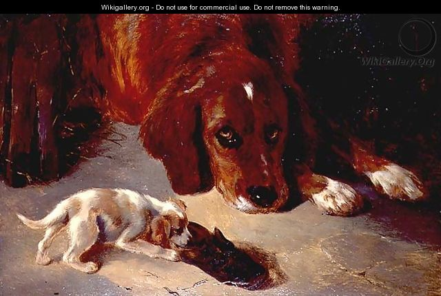 An Inquisitive Puppy - George W. Horlor