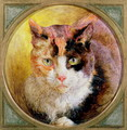 A Head Study of a Tortoiseshell Cat - William Huggins