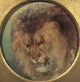 Study of a Lion - William Huggins