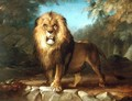 A Lion - William Huggins