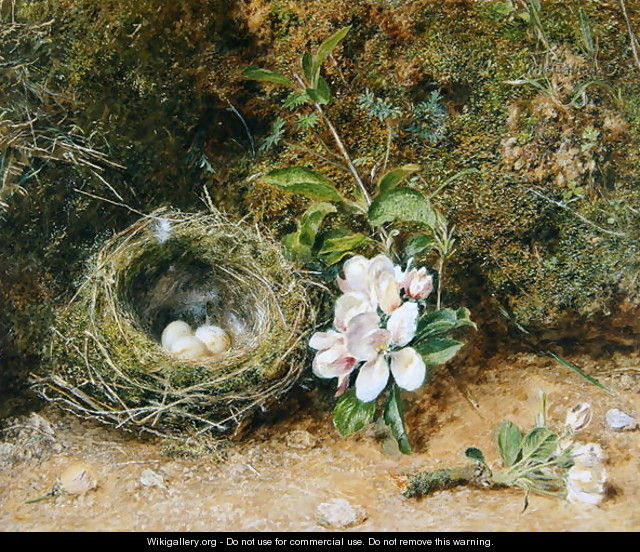 Birds Nest with Sprays of Apple Blossoms - William Henry Hunt