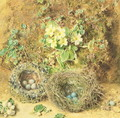 Primroses and Birds Nests - William Henry Hunt