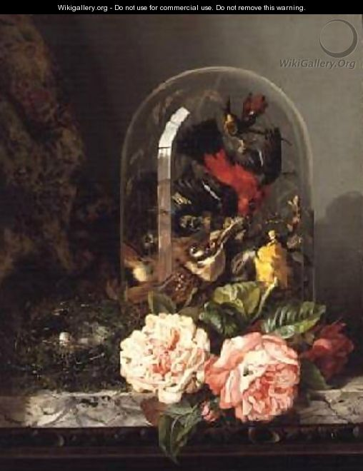 Still Life with Humming Bird in a Glass Dome - Edward Ladell
