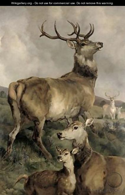 The Noble Beast - Sir Edwin Henry Landseer