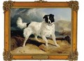 Neptune the Property of William Ellis Gosling Esq - Sir Edwin Henry Landseer