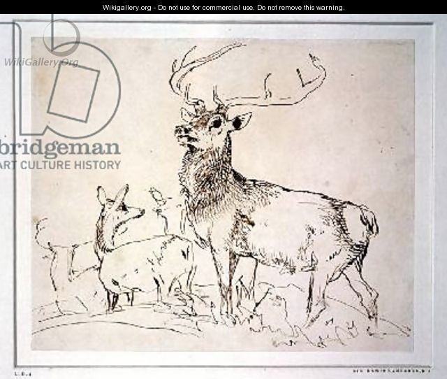 Stag and Does - Sir Edwin Henry Landseer