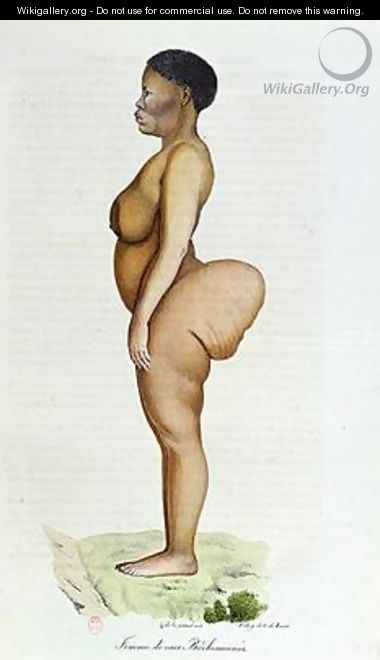 The Hottentot Venus Bushman woman - Carel Christian Anthony Last