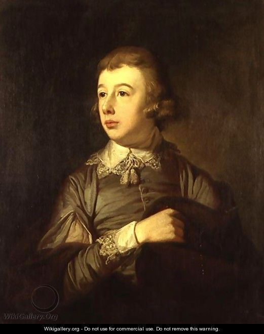 Portrait of a Boy said to be William Pitt The Younger 1759-1806 - Tilly Kettle