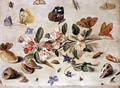 A Study of Flowers and Insects - Jan van Kessel