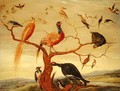 A Concert of Birds - Jan van Kessel