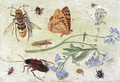 Insects 4 - Jan van Kessel