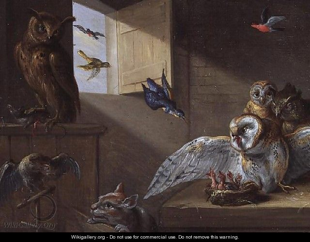 A Family of Owls other Birds and a Cat - Jan van Kessel
