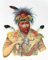 Ne Sou A Quoit a Fox Chief - (after) King, Charles Bird