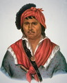 Neamathla Chief - Charles Bird King