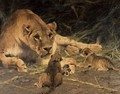 A Lioness and Her Cubs - Wilhelm Kuhnert