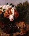 Just Shot Spaniel with a Dead Grouse - Colin Graeme