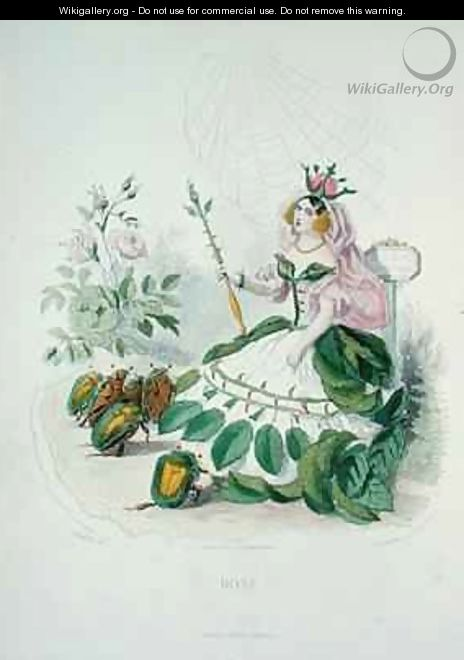 The Rose Rosa Centifolia the Queen of the Flowers - (Jean Ignace Isidore Gerard) Grandville
