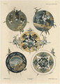 Circles plate 42 from Fantaisies decoratives - (after) Habert-Dys, Jules-Auguste